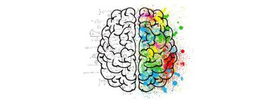 krzywa-zapominania-w-nauce-jezykow